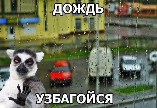 соцм1